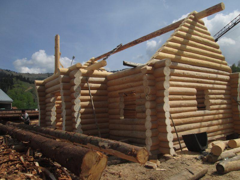 constructii case lemn rotund Franta